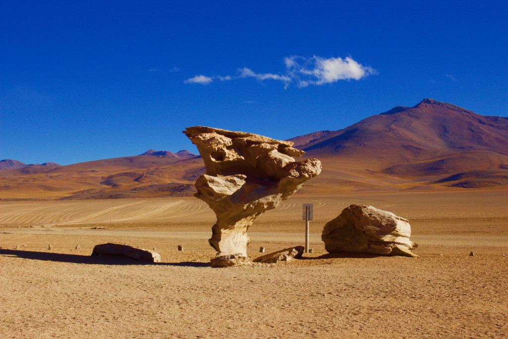Salar del Uyuni-Tree Rock-Bolivia