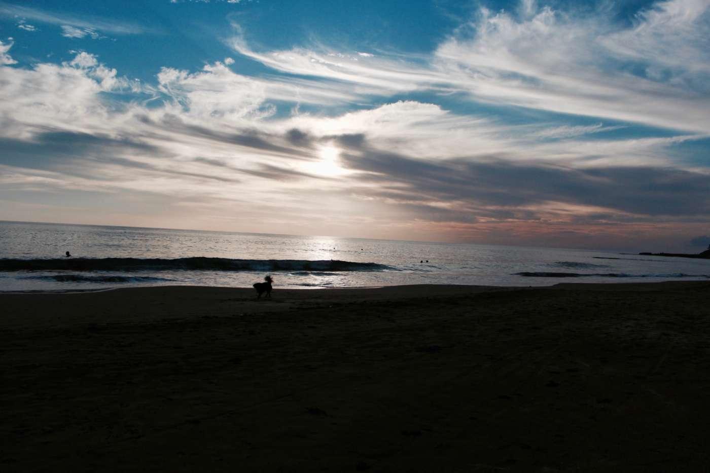 katamah-treasure-beach
